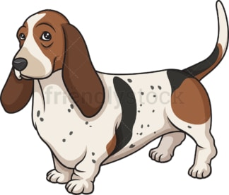 Proud basset hound. PNG - JPG and vector EPS (infinitely scalable).