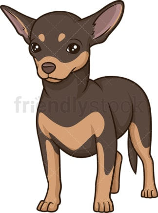 Proud chihuahua. PNG - JPG and vector EPS (infinitely scalable).