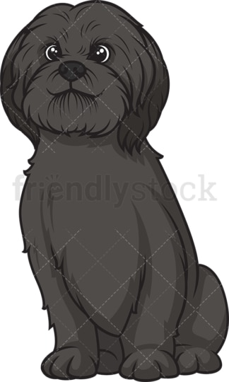 Black shih tzu sitting. PNG - JPG and vector EPS (infinitely scalable).
