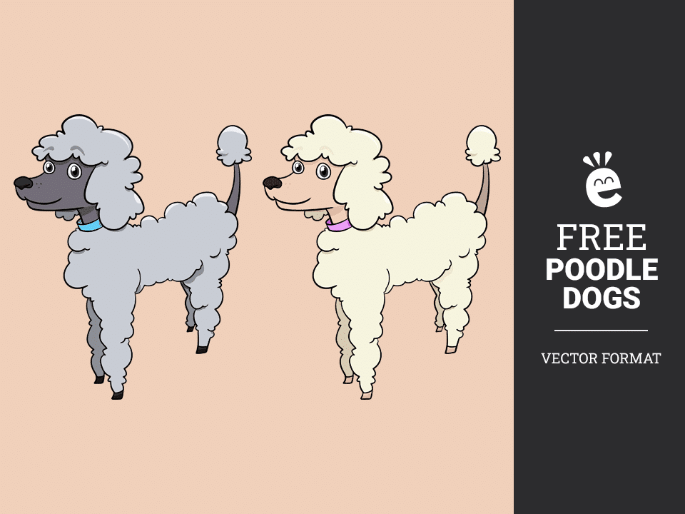Poodle Dogs - Free Vector Graphics