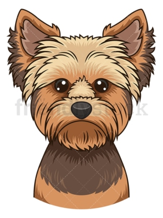 Yorkie face. PNG - JPG and vector EPS (infinitely scalable).