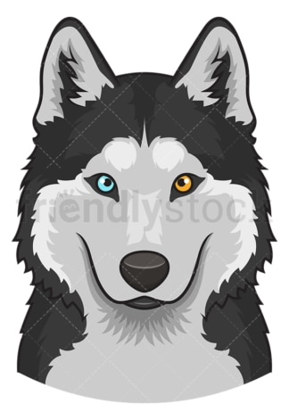 Siberian husky face. PNG - JPG and vector EPS (infinitely scalable).