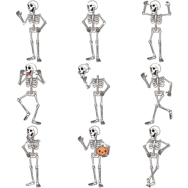 Human skeleton character cartoon bundle. PNG - JPG and infinitely scalable vector EPS - on white or transparent background.