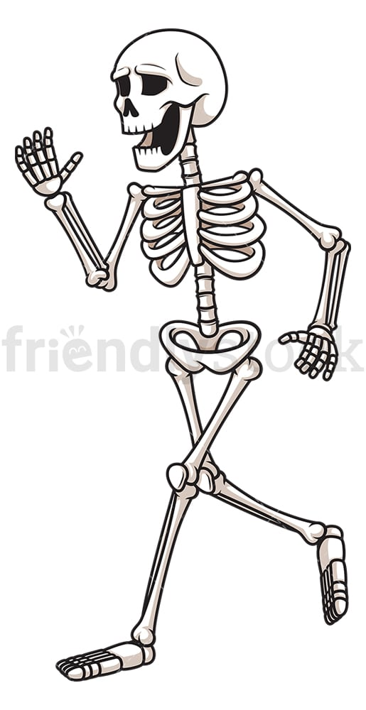 Skeleton running away. PNG - JPG and vector EPS (infinitely scalable).