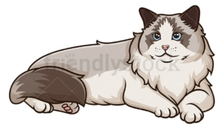 Ragdoll cat lying down. PNG - JPG and vector EPS (infinitely scalable).