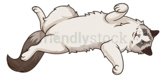 Ragdoll cat lying on its back. PNG - JPG and vector EPS (infinitely scalable).