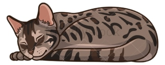 Bengal cat sleeping. PNG - JPG and vector EPS (infinitely scalable).