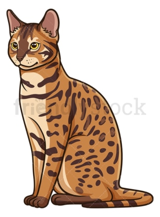 Bengal cat sitting. PNG - JPG and vector EPS (infinitely scalable).