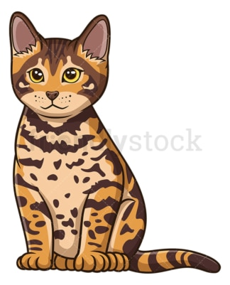 Bengal kitten. PNG - JPG and vector EPS (infinitely scalable).