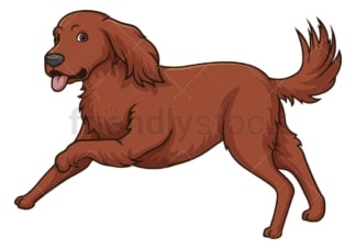 Irish setter running. PNG - JPG and vector EPS (infinitely scalable).