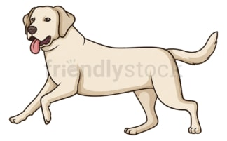 Labrador retriever running. PNG - JPG and vector EPS (infinitely scalable).