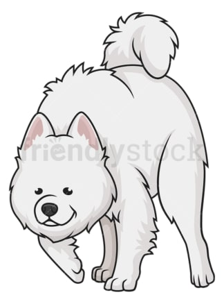 Samoyed sniffing. PNG - JPG and vector EPS (infinitely scalable).