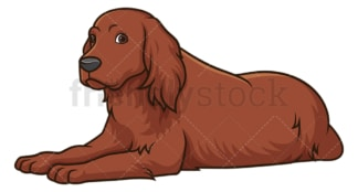 Irish setter lying down. PNG - JPG and vector EPS (infinitely scalable).