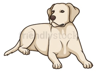 Labrador retriever lying down. PNG - JPG and vector EPS (infinitely scalable).