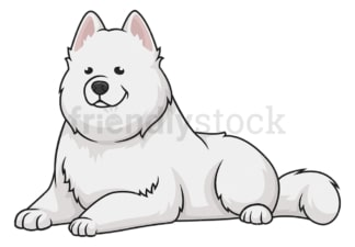 Samoyed lying down. PNG - JPG and vector EPS (infinitely scalable).