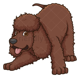 Playful irish water spaniel. PNG - JPG and vector EPS (infinitely scalable).
