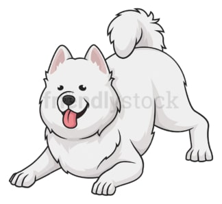 Playful samoyed. PNG - JPG and vector EPS (infinitely scalable).