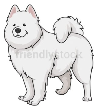 Gorgeous samoyed dog. PNG - JPG and vector EPS