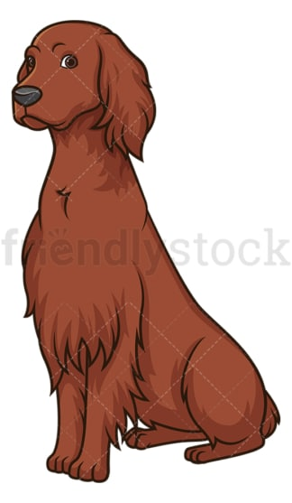 Obedient irish setter sitting. PNG - JPG and vector EPS (infinitely scalable).