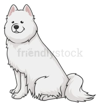 Obedient samoyed dog. PNG - JPG and vector EPS (infinitely scalable).