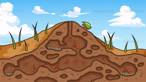 Ant underground nest background in 16:9 aspect ratio. PNG - JPG and vector EPS file formats (infinitely scalable).