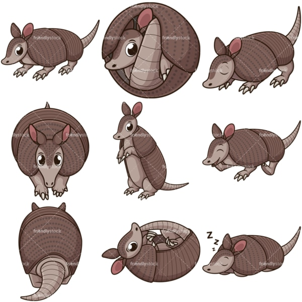 Cute armadillo. PNG - JPG and infinitely scalable vector EPS - on white or transparent background.
