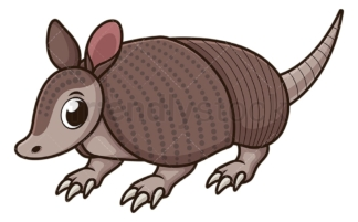 Armadillo on all fours. PNG - JPG and vector EPS (infinitely scalable).