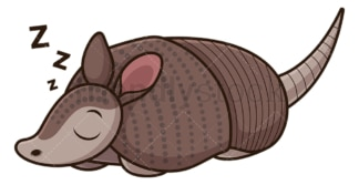 Armadillo sleeping. PNG - JPG and vector EPS (infinitely scalable).