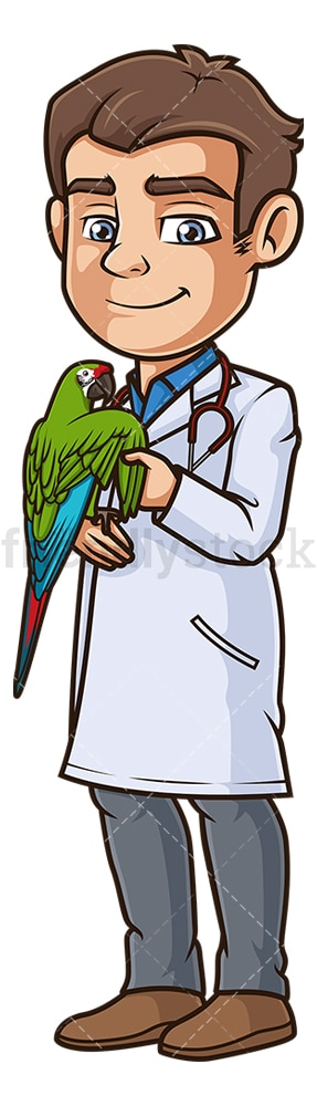 Male veterinarian examining parrot. PNG - JPG and vector EPS (infinitely scalable).