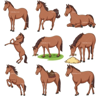 Realistic horse. PNG - JPG and infinitely scalable vector EPS - on white or transparent background.