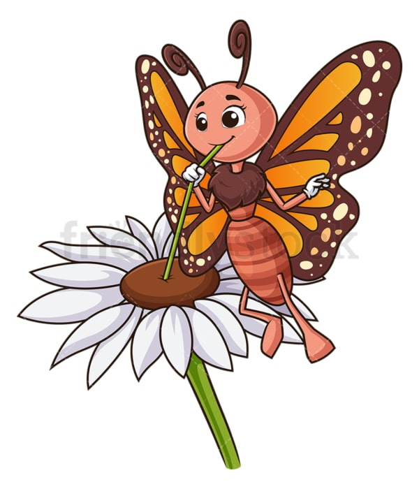 Butterfly drinking nectar. PNG - JPG and vector EPS (infinitely scalable).