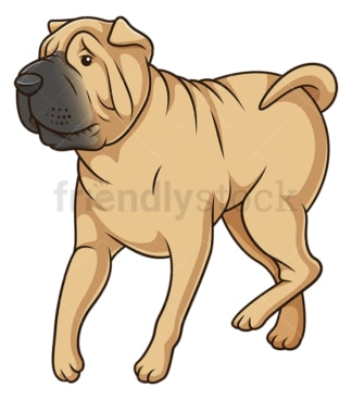 Shar pei dog walking. PNG - JPG and vector EPS (infinitely scalable).