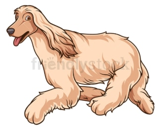 Afghan hound running. PNG - JPG and vector EPS (infinitely scalable).
