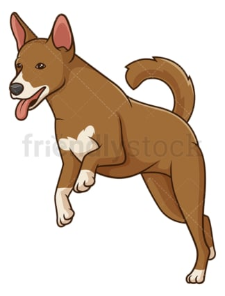 Basenji dog running. PNG - JPG and vector EPS (infinitely scalable).