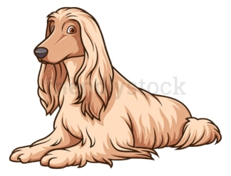 Afghan hound lying down. PNG - JPG and vector EPS (infinitely scalable).