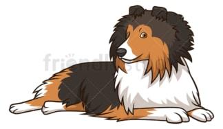 Shetland sheepdog dog lying down. PNG - JPG and vector EPS (infinitely scalable).