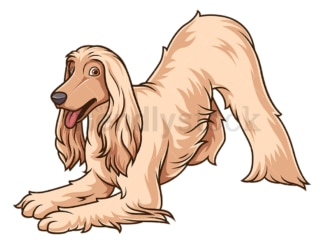 Playful afghan hound. PNG - JPG and vector EPS (infinitely scalable).
