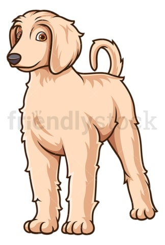 Cute afghan hound puppy. PNG - JPG and vector EPS (infinitely scalable).