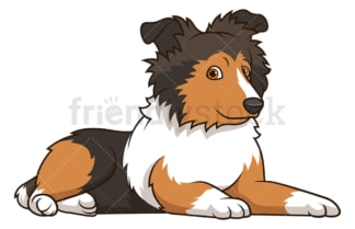 Cute sheltie puppy. PNG - JPG and vector EPS (infinitely scalable).