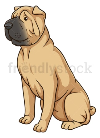 Obedient shar pei dog sitting. PNG - JPG and vector EPS (infinitely scalable).