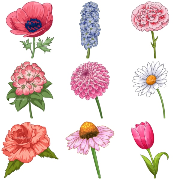 Common flowers 2. PNG - JPG and infinitely scalable vector EPS - on white or transparent background.