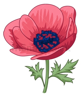 Anemone flower. PNG - JPG and vector EPS (infinitely scalable).