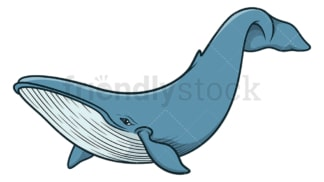 Blue whale. PNG - JPG and vector EPS (infinitely scalable).