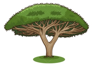 Dragon tree. PNG - JPG and vector EPS (infinitely scalable).