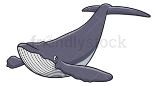 Humpback whale. PNG - JPG and vector EPS (infinitely scalable).