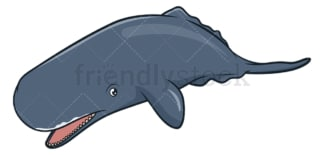Sperm whale. PNG - JPG and vector EPS (infinitely scalable).