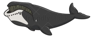 Bowhead whale. PNG - JPG and vector EPS (infinitely scalable).