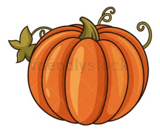 Autumn pumpkin. PNG - JPG and vector EPS file formats (infinitely scalable). Image isolated on transparent background.