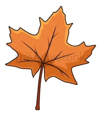Brown autumn maple leaf. PNG - JPG and vector EPS file formats (infinitely scalable). Image isolated on transparent background.